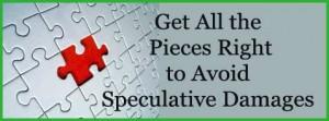 Speculative Damages